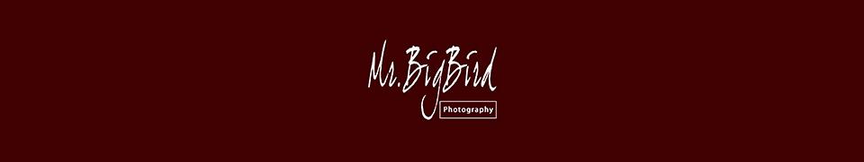 婚攝 / 哥拍的不是婚攝是回憶 – 婚攝大鳥先生MrBigBird Photography logo